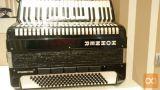 klavirsko harmoniko melodija 120 in hohner student 120