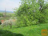 Borovnica Zazidljiva 788 m2