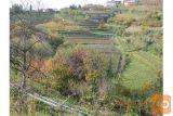 Goriška Brda Zazidljivo Zemljišče Prodamo
