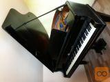 Klavir, koncertni Hofmann Mignon & Czerny A. G. leto 1928
