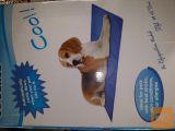 Samohladilna blazina za psa